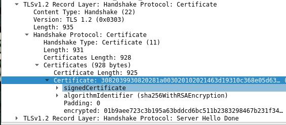 Wireshark Server Certificate